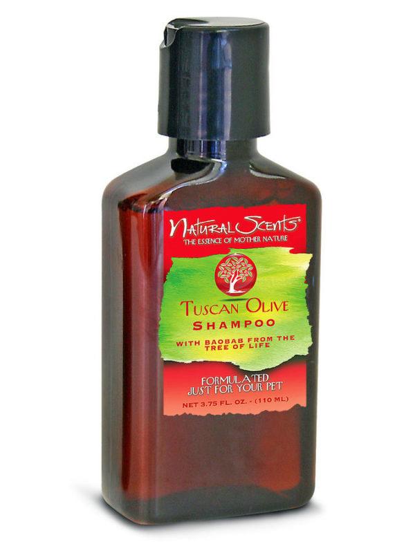 Baobab Tuscan Olive